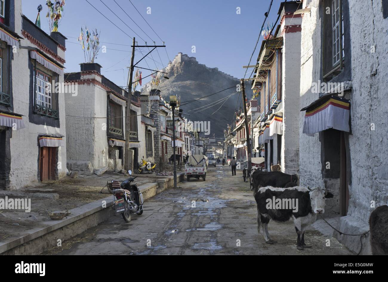 Traditional houses in the Old town of Gyantse, Tibet, with the fort towering above - Stock Image