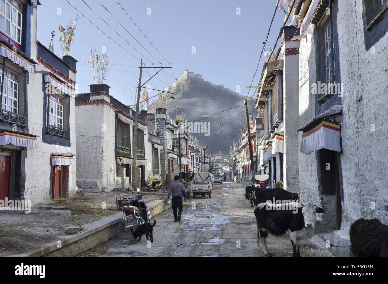 Traditional houses in the Old town of Gyantse - Stock Image