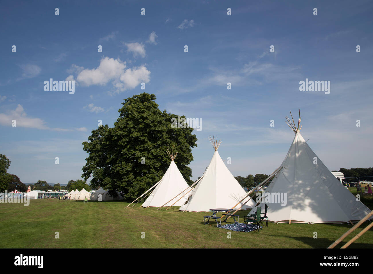 Tipi camping field, campsite, at Deer Shed festival. Glamping in teepees. - Stock Image