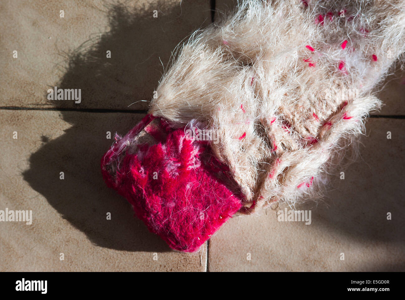 Worn cat scratching board showing the value of providing an alternative attraction to domestic furniture - Stock Image
