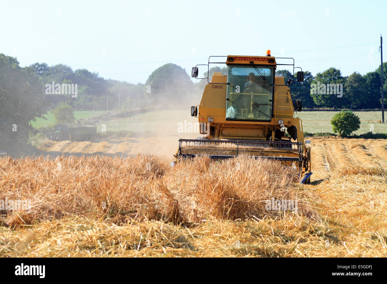 Combine harvester in a crop field in Honley, Holmfirth, West Yorkshire, England, UK. - Stock Image