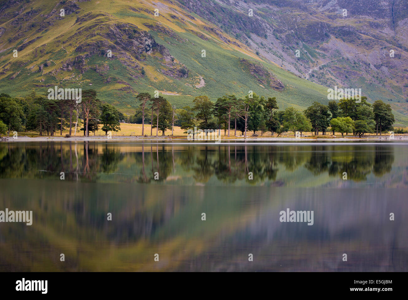 Pre-dawn reflections on Buttermere Lake, Cumbria, Lake District, England - Stock Image