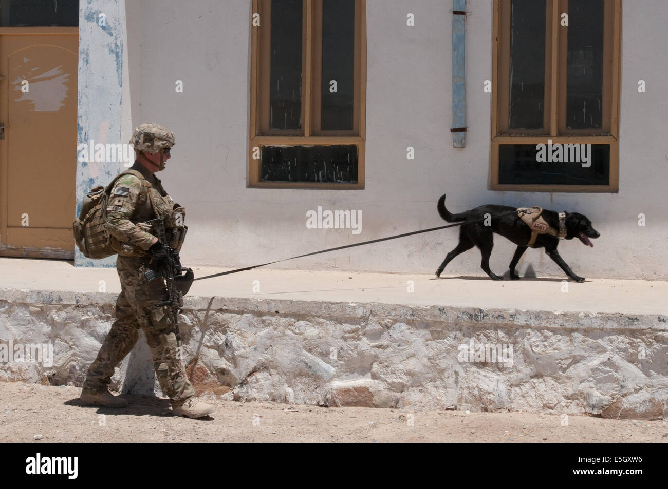 U.S. Army Spc. Adam Thiss and his dog, Livee, both assigned to a tactical explosive detector dog team with the 1st - Stock Image