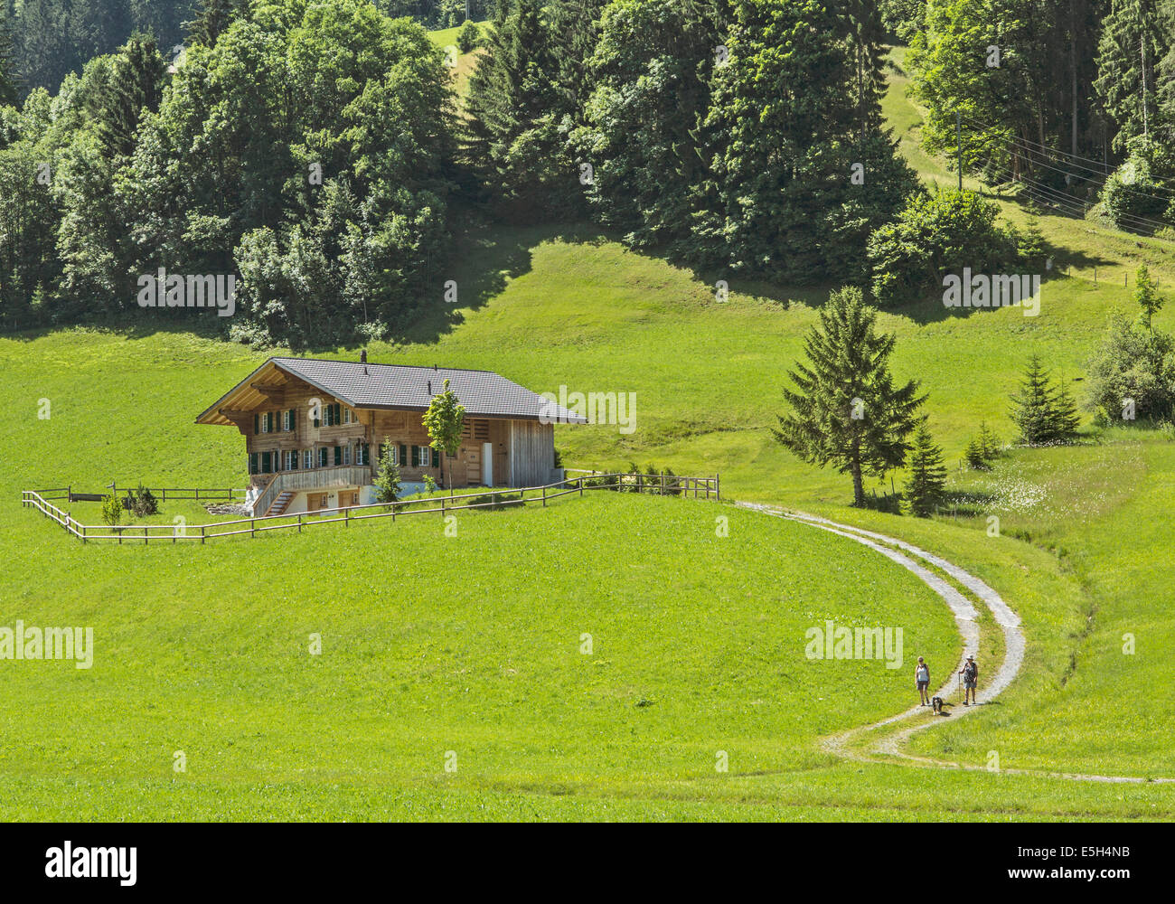 Two hikers, with their dog, leaving an isolated rural chalet in central Switzerland - Stock Image