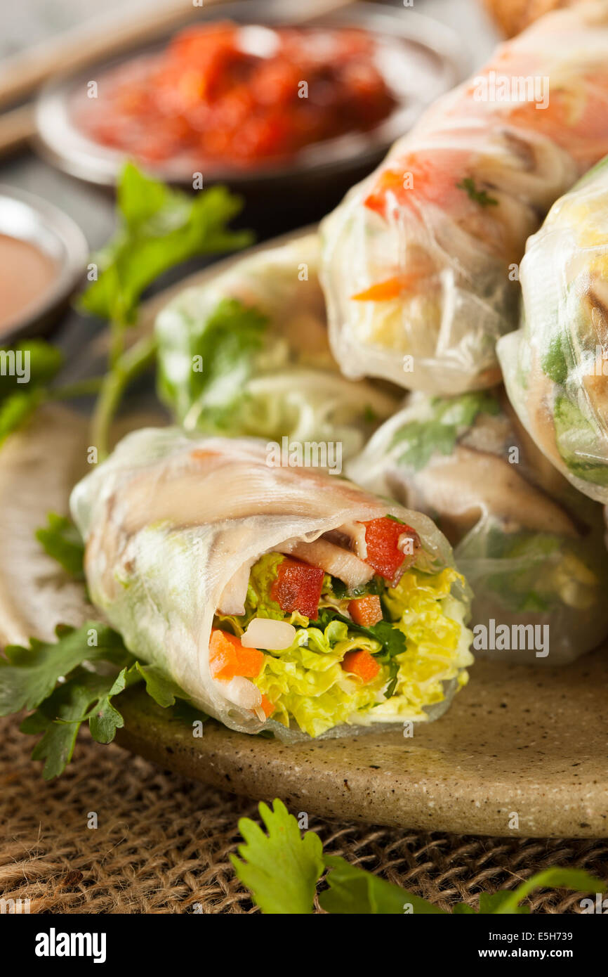 Healthy Vegetarian Spring Rolls with Cilantro Carrots and Cabbage - Stock Image
