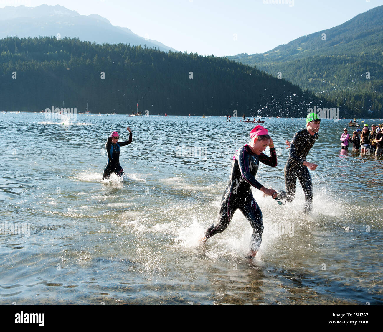 Ironman swimmers emerge from Alta lake at the end of the swim section  2014 Canadian Ironman.  Whistler BC, Canada. - Stock Image