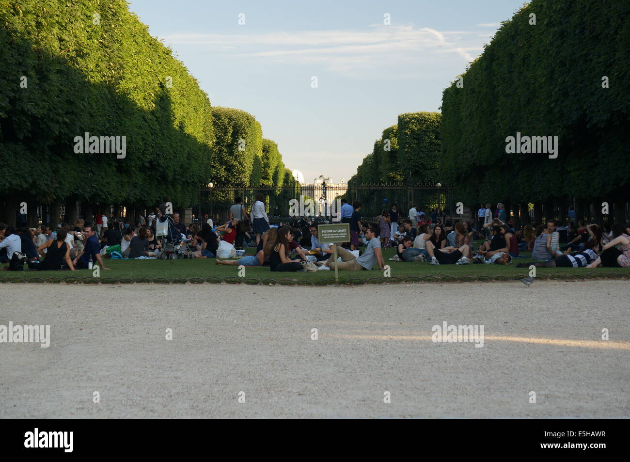 Tourists Parisians relaxing sitting on the grass in Jardin du Luxembourg Garden - Stock Image