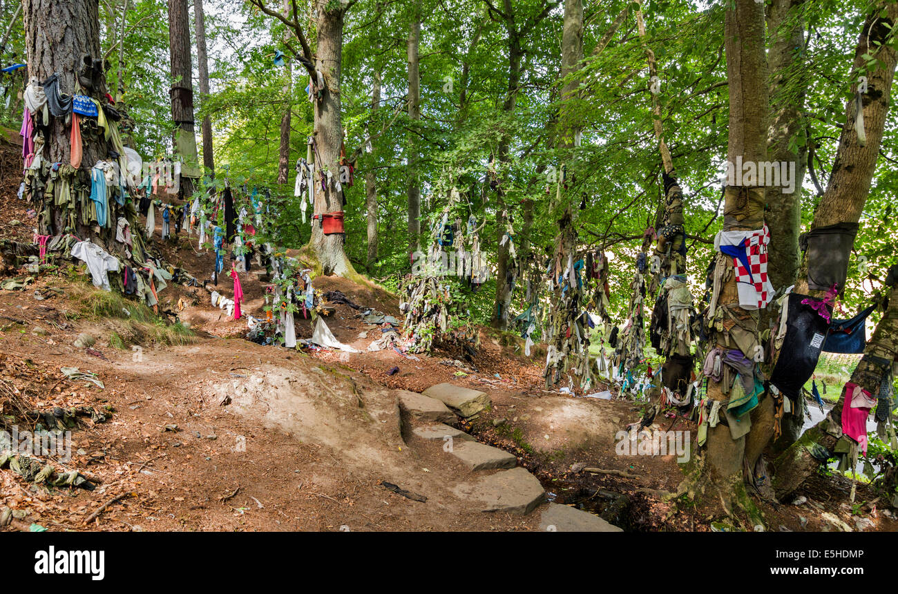 CLOOTIE WELL AT MUNLOCHY BLACK ISLE VARIETY OF CLOTHING TIED TO TREES IN THE HOPE OF HAVING AN ILLNESS CURED - Stock Image