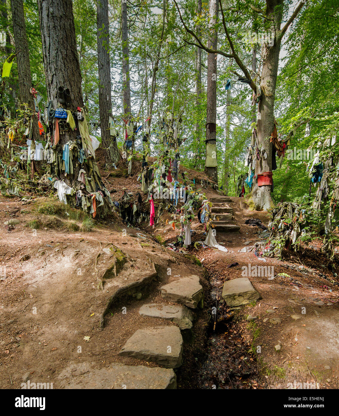 CLOOTIE WELL AT MUNLOCHY BLACK ISLE VARIETY OF CLOTHING TIED TO TREES BY PEOPLE IN THE HOPE OF HAVING AN ILLNESS - Stock Image