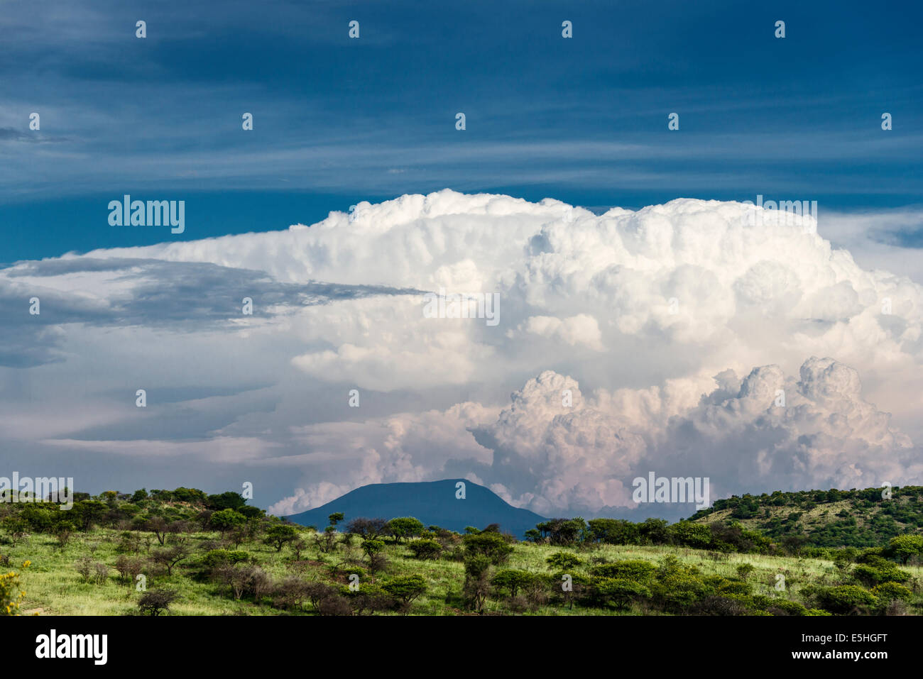 Cloud formation above trees with view to horizon in Nambiti Reserve, Kwa-Zulu Natal, South Africa - Stock Image