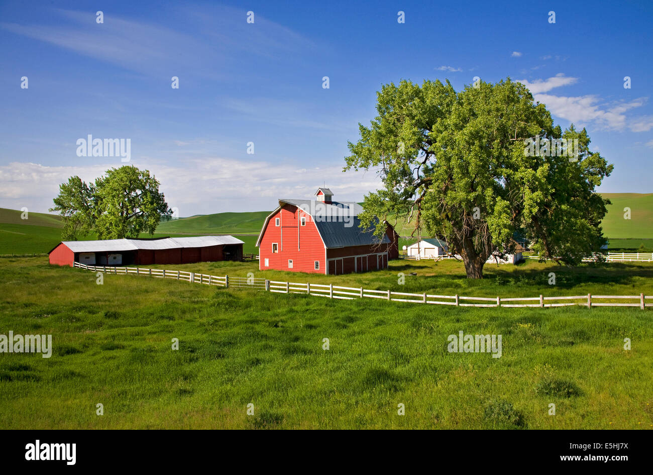 A farm in the remote Palouse Empire region,  a farming and wheat growing region of rolling hills and wide skies Stock Photo