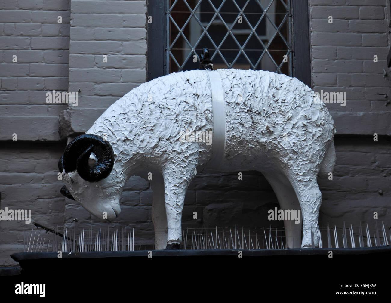 9608. Old Wool Shop sign, Salisbury, Wiltshire - Stock Image