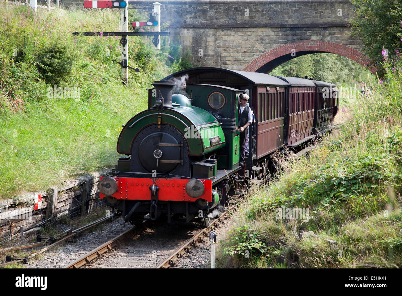 The steam engine 'Sir Cecil A Cochrane' pulling passenger carriages at the Tanfield Railway, Durham. - Stock Image