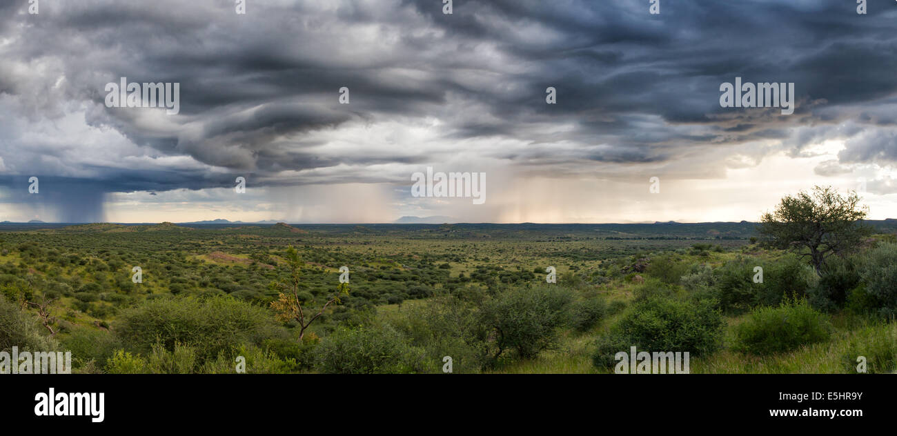 Panorama of a thunderstorm over the namibian plains near Windhoek, Namibia, Africa - Stock Image