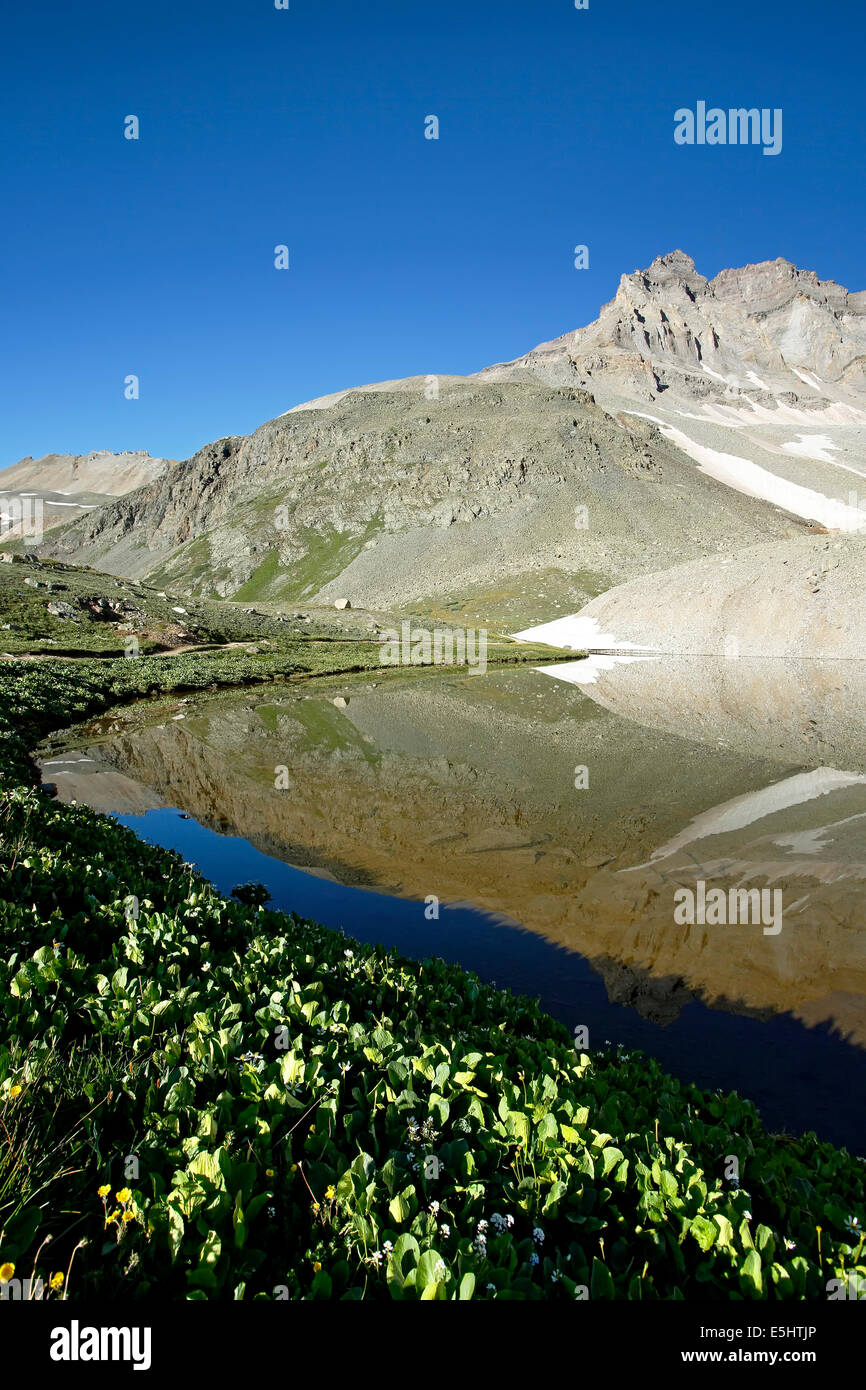 Gilpin Peak reflected on Wright Lake, Yankee Boy Basin, near Ouray, Colorado USA - Stock Image