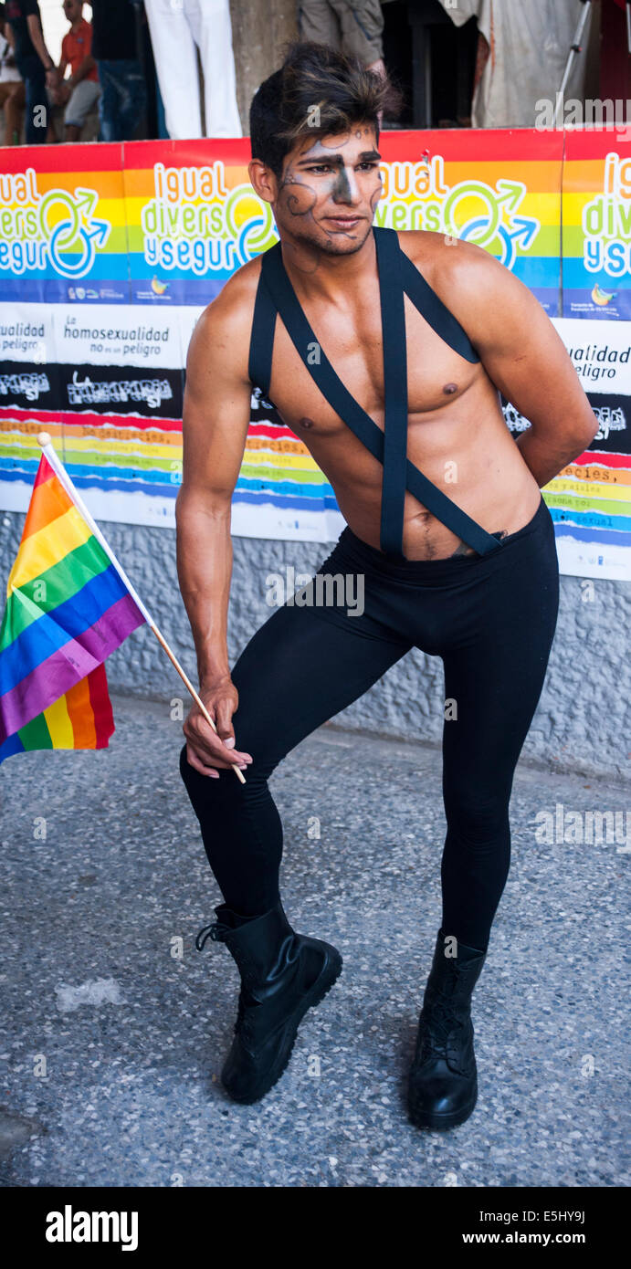 Poses de gays