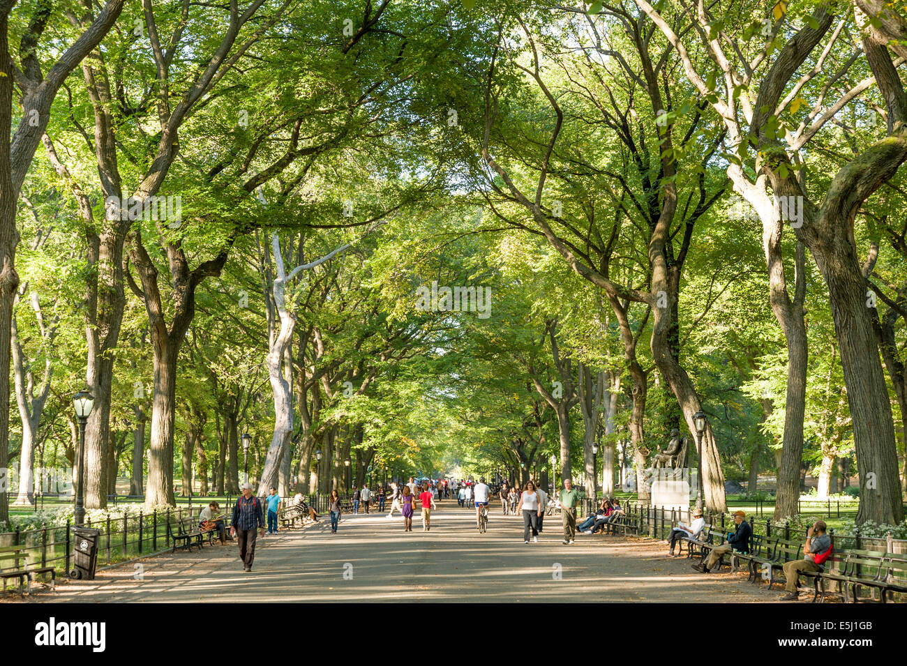 The Mall in Central Park, New York City, USA - Stock Image