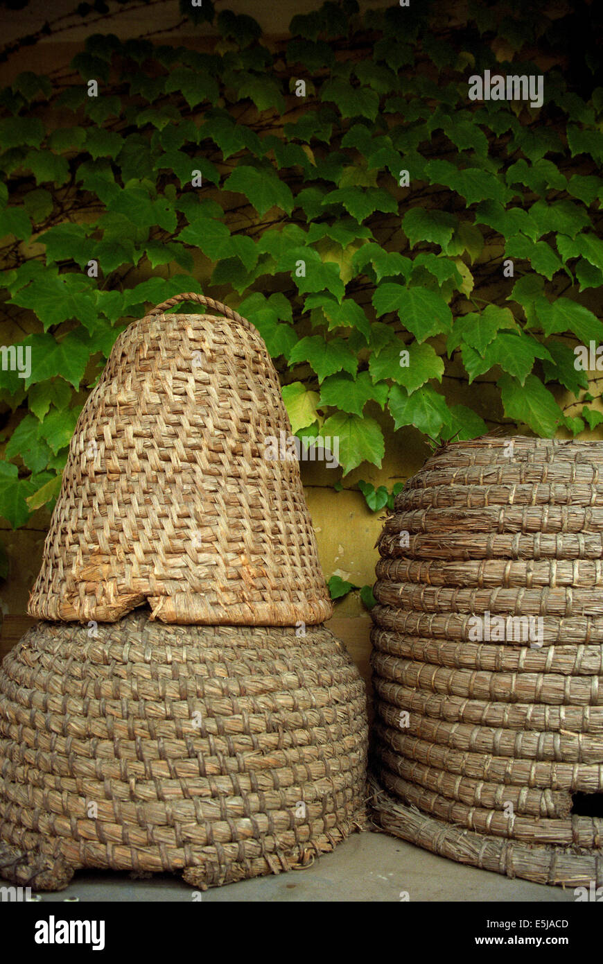 Old beehive - Stock Image