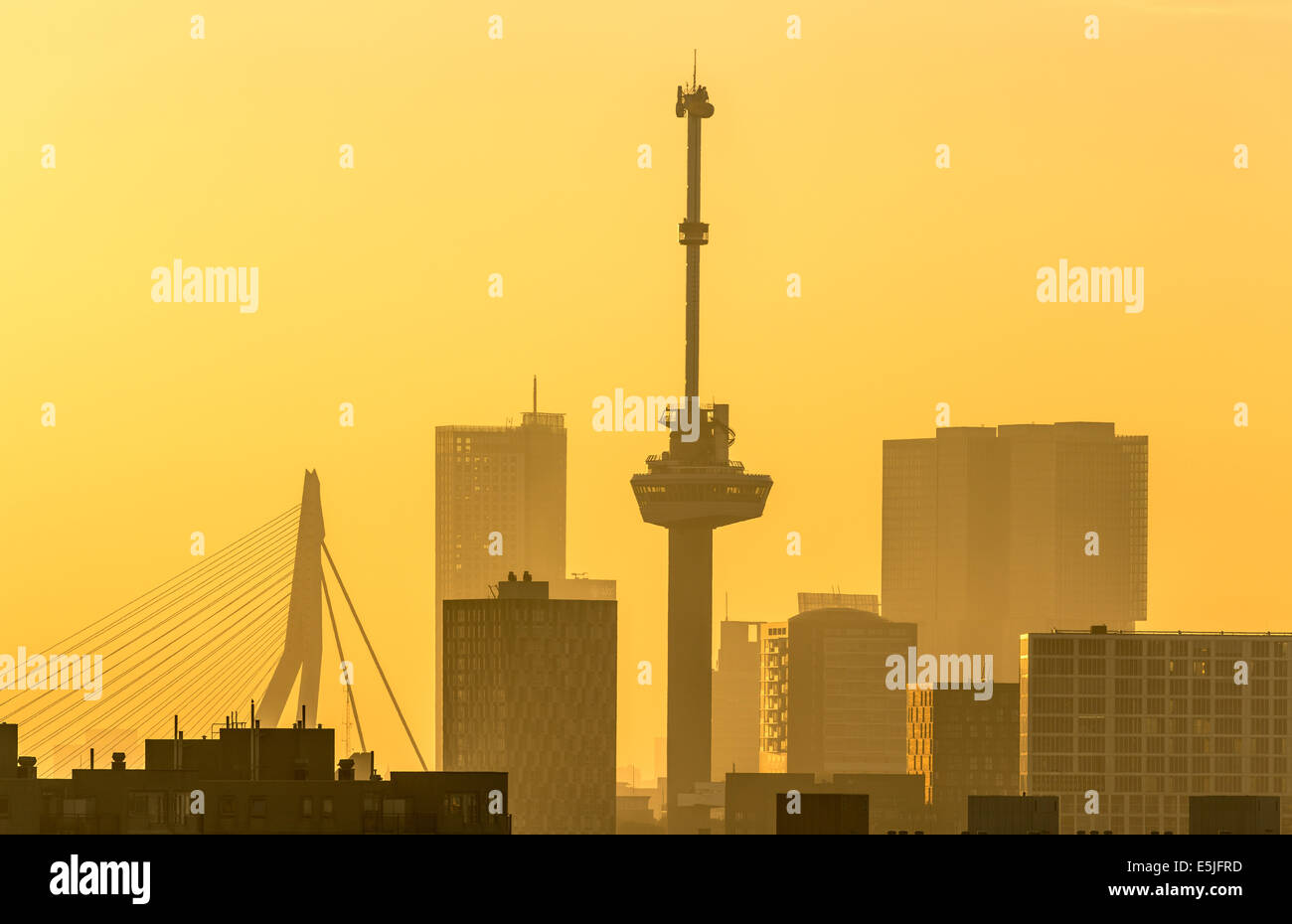 Netherlands, Rotterdam, Skyline with Euromast and Erasmus bridge. Sunrise - Stock Image