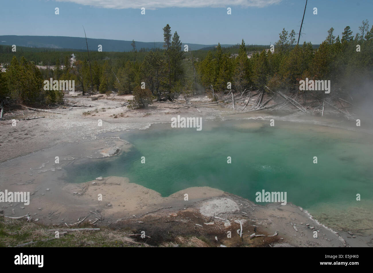 The Emerald Pool at Norris Geyser Basin. Norris Geyser Basin supplies the calcium carbonate water that flows underground - Stock Image