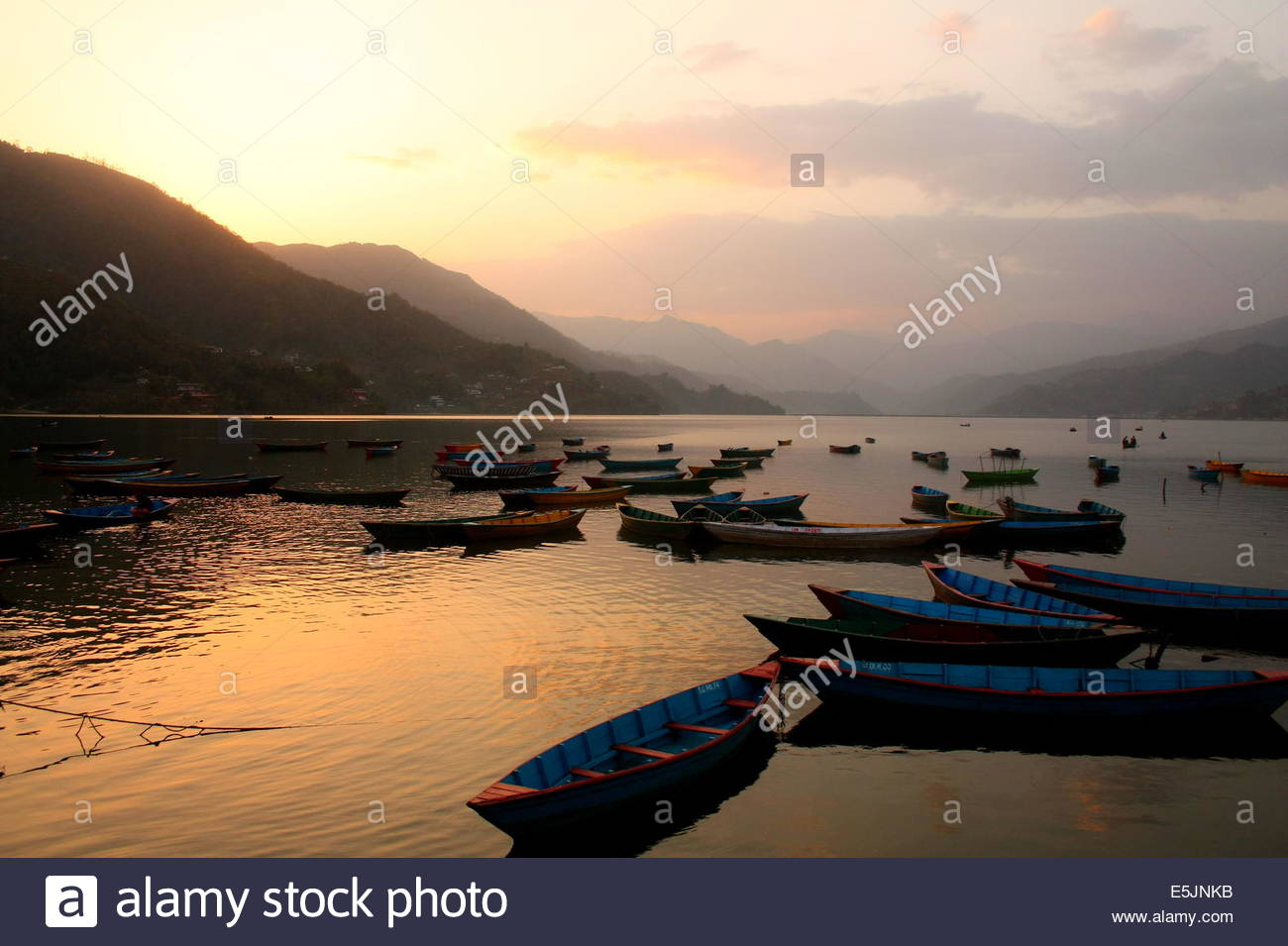 Rowing boats on Pokhara lake, Nepal at Sunset - Stock Image