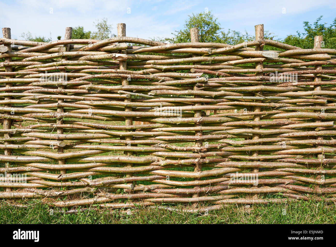 Wattle Fencing At Flag Fen Bronze Age Centre Fenland Cambridgeshire UK - Stock Image