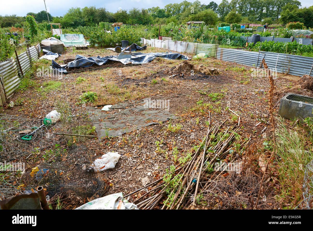Allotment Just Being Cleared And Started By A New Owner - Stock Image