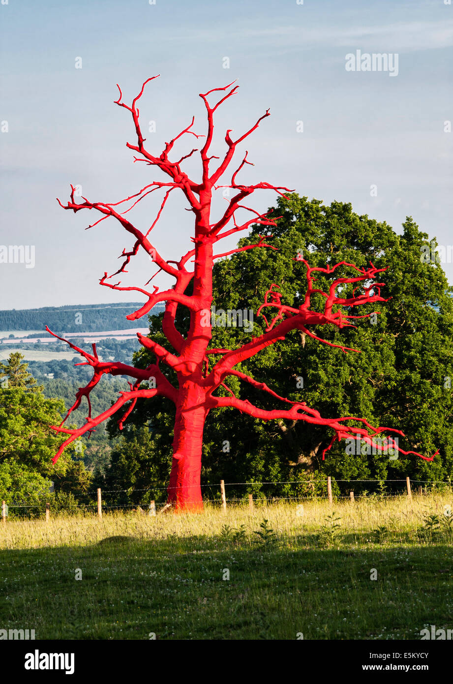 Red Tree, a temporary artwork at Croft Castle, Herefordshire, UK, by the artist Philippa Lawrence - Stock Image
