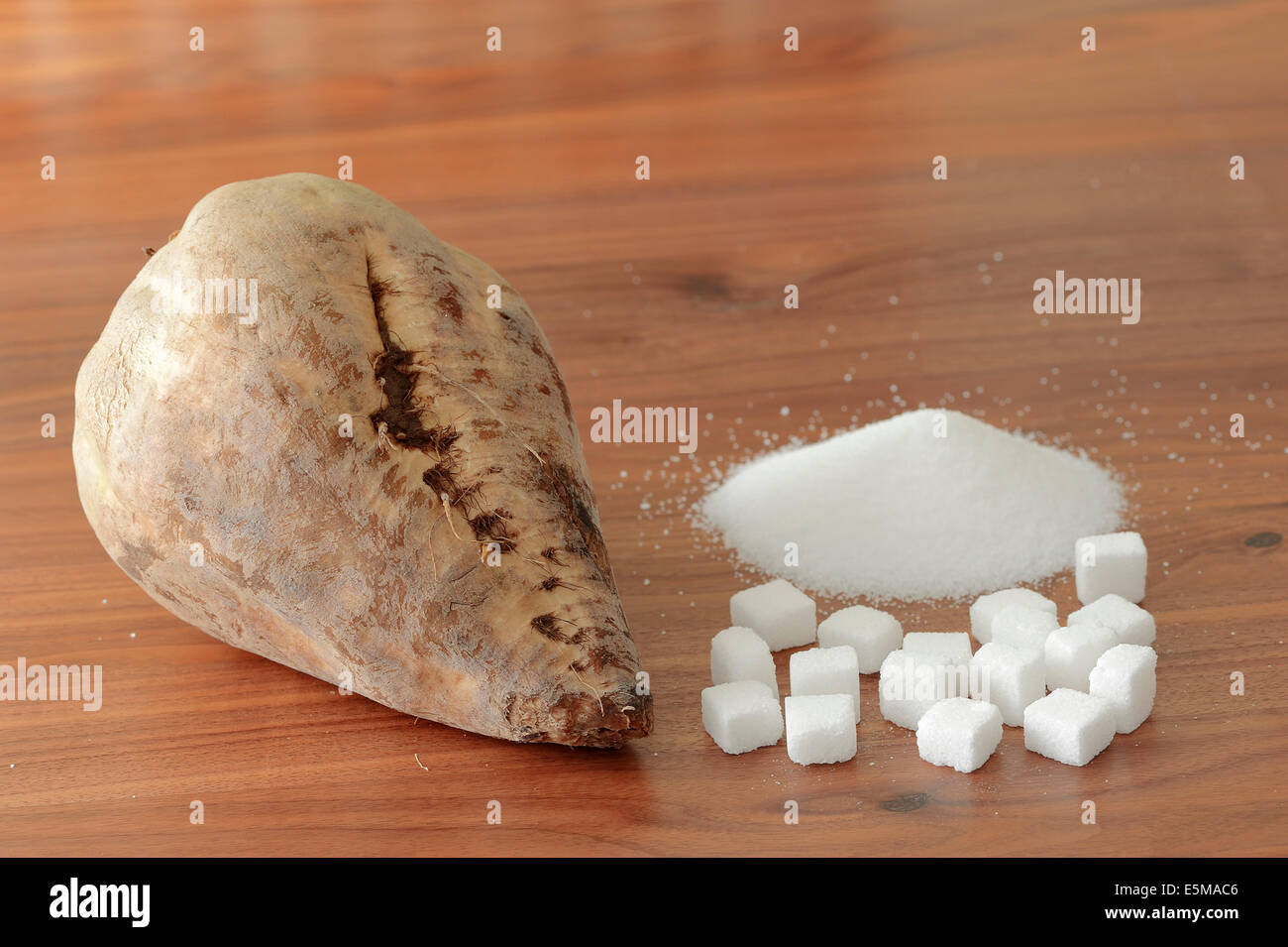 Sugar Beet and white sugar (Beta vulgaris ssp. vulgaris var. altissima) - Stock Image