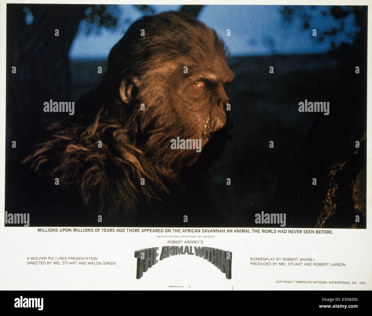 THE ANIMAL WITHIN, (aka UP FROM THE APE), 1974 - Stock Image
