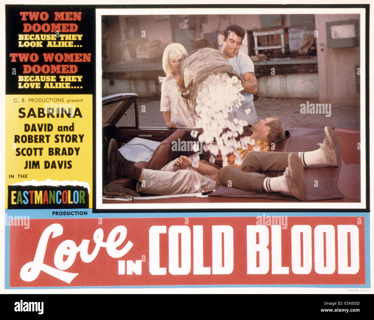LOVE IN COLD BLOOD, (aka THE ICE HOUSE), 1969 - Stock Image