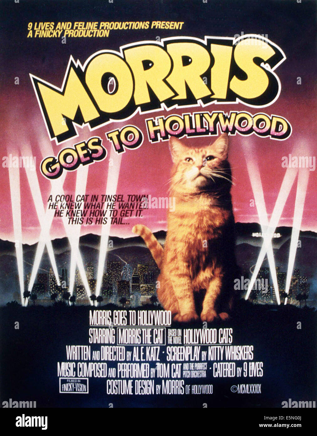 MORRIS GOES TO HOLLYWOOD, Morris the Cat, 1989 - Stock Image