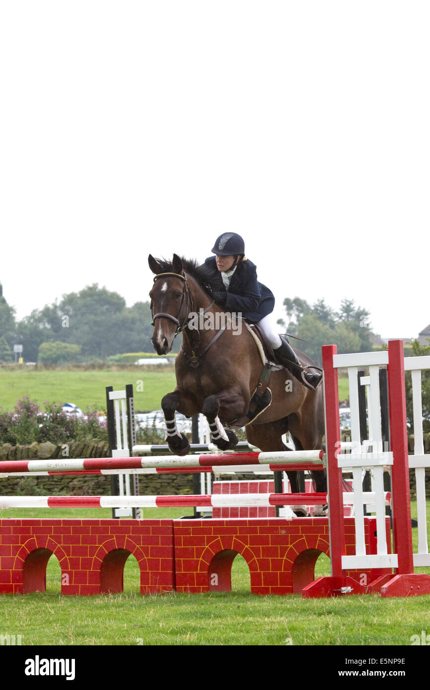 Showjumping horse and rider clearing a set of poles at a competitive showjumping event - Stock Image