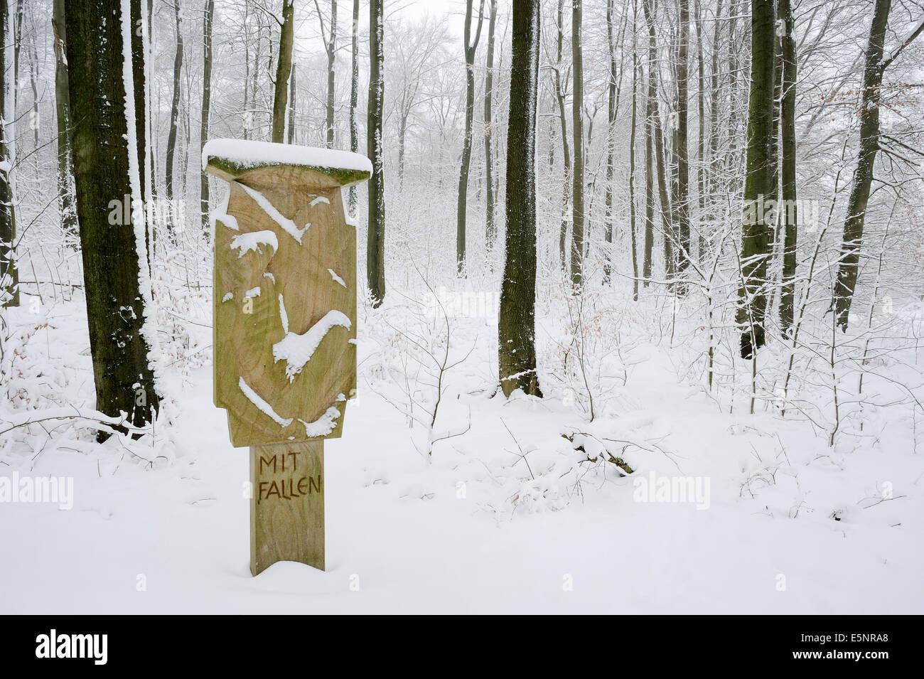 Way of the cross in winter, Baumberge, Munsterland, North Rhine-Westphalia, Germany - Stock Image