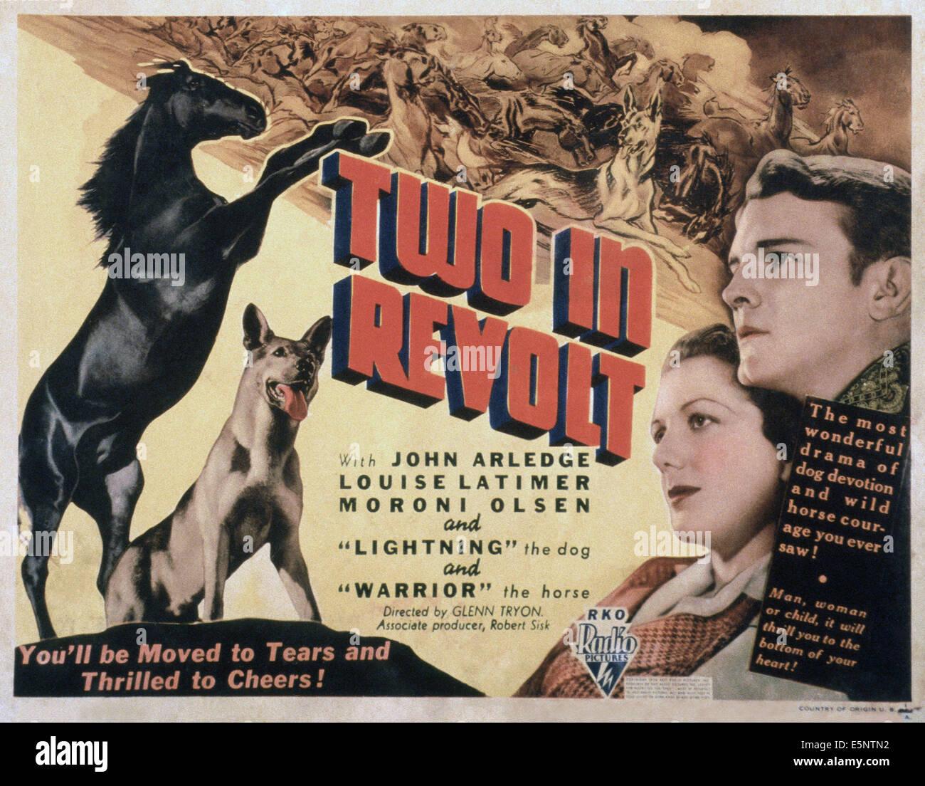 TWO IN REVOLT, US lobbycard, from left: Warrior the horse, Lightning the dog, Louise Latimer, John Arledge, 1936Stock Photo