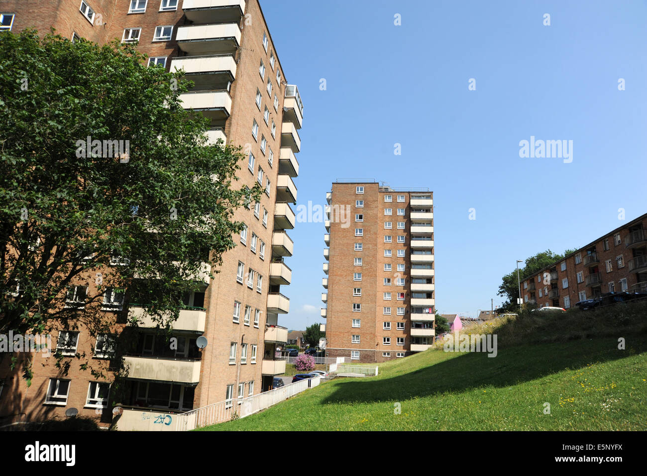 Brighton Sussex UK July 2014 - Red poppies growing wild amongst housing council estate Brighton city centre - Stock Image