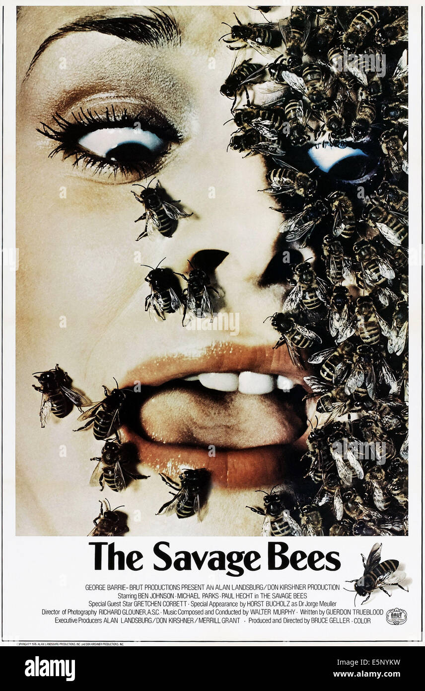 THE SAVAGE BEES, US poster, 1976 - Stock Image