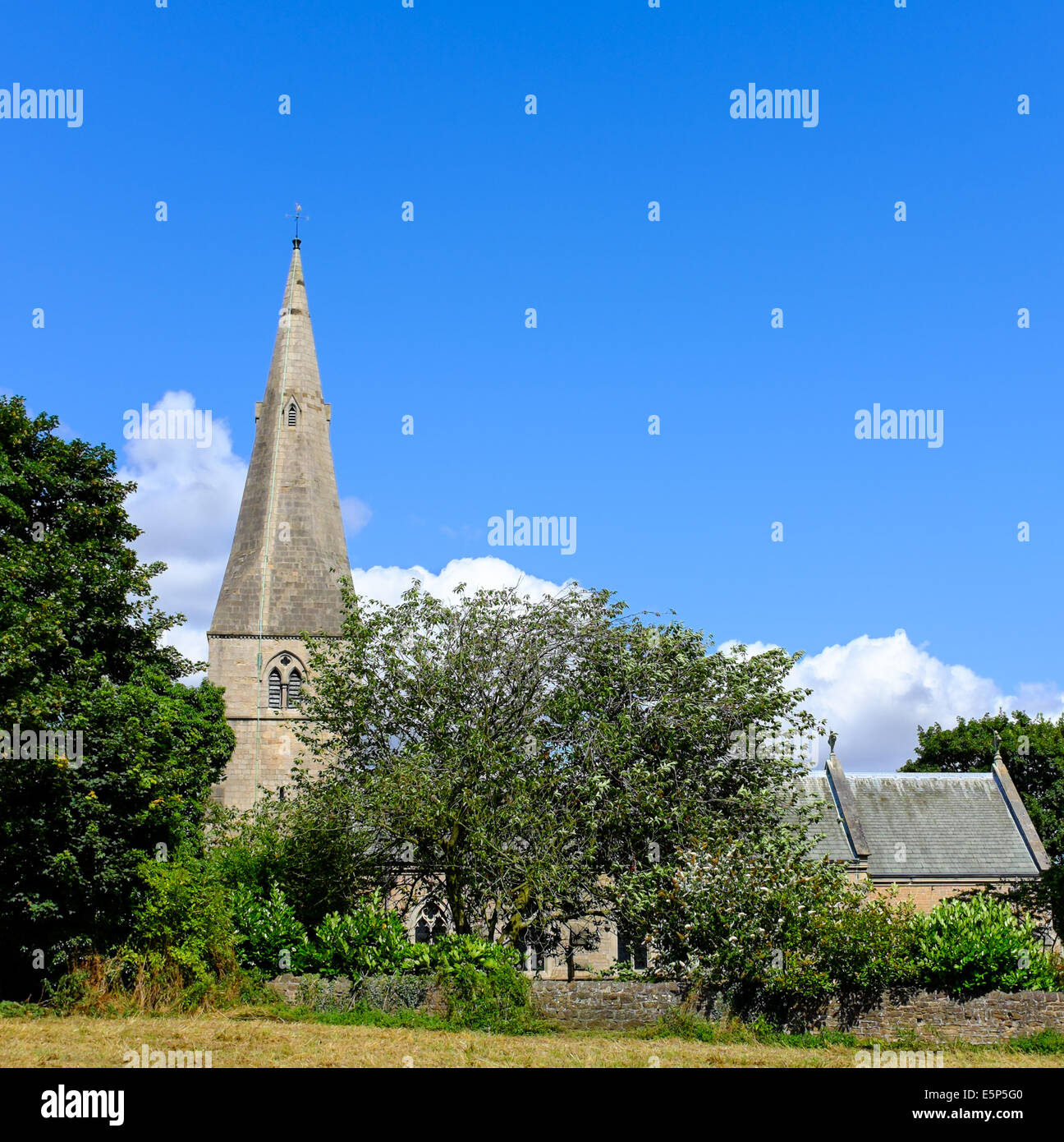 View of St Wilfrid's Church, Kirkby In Ashfield, Nottinghamshire, England. - Stock Image