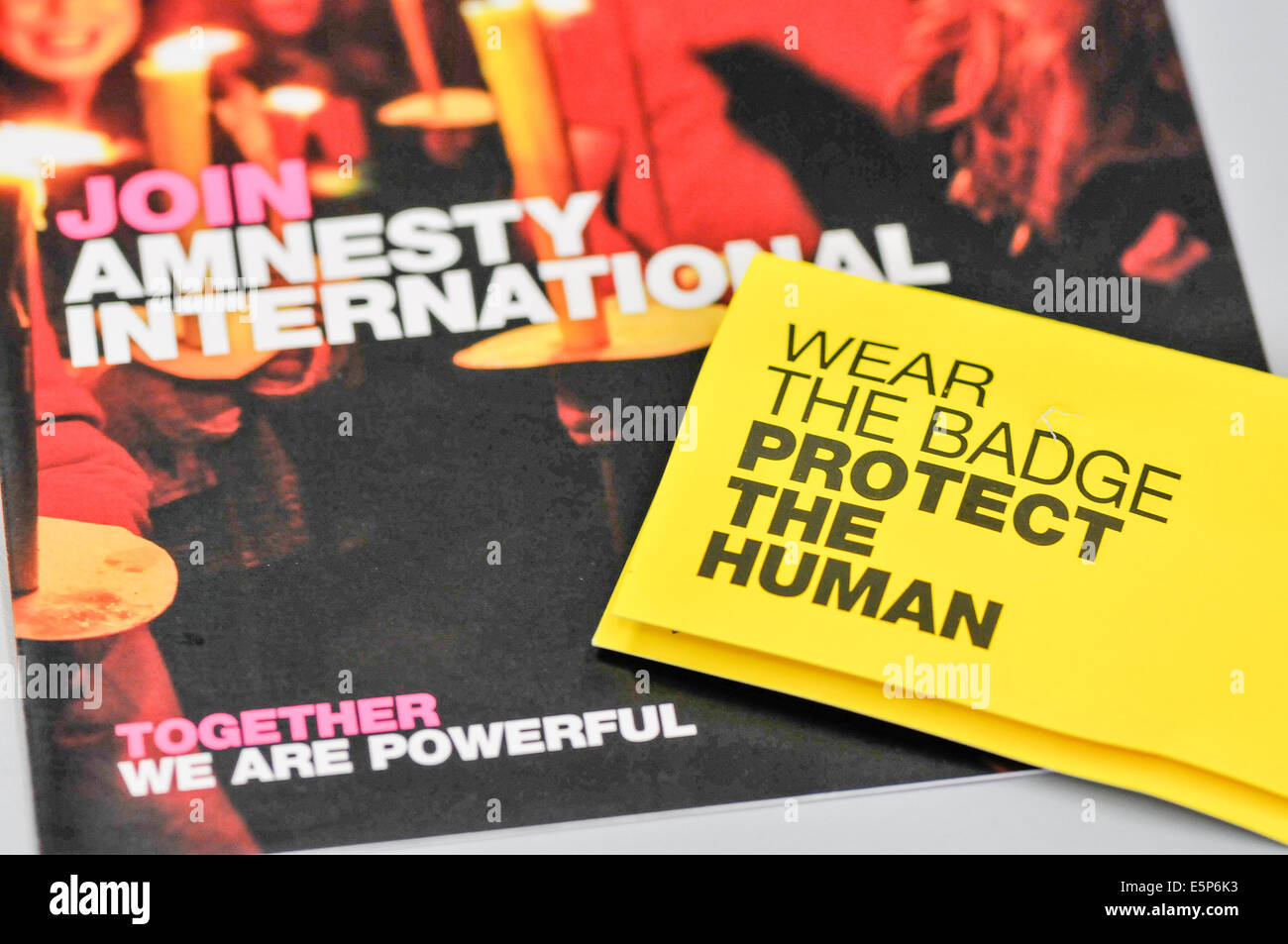 Belfast, Northern Ireland. 4th Aug, 2014.  Amnesty International literature Credit:  Stephen Barnes/Alamy Live News - Stock Image