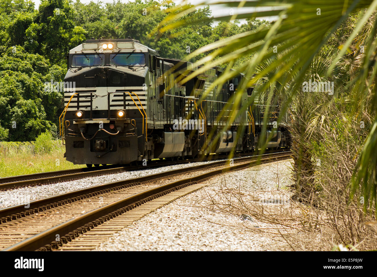 Three locomotives freight train incoming - Stock Image