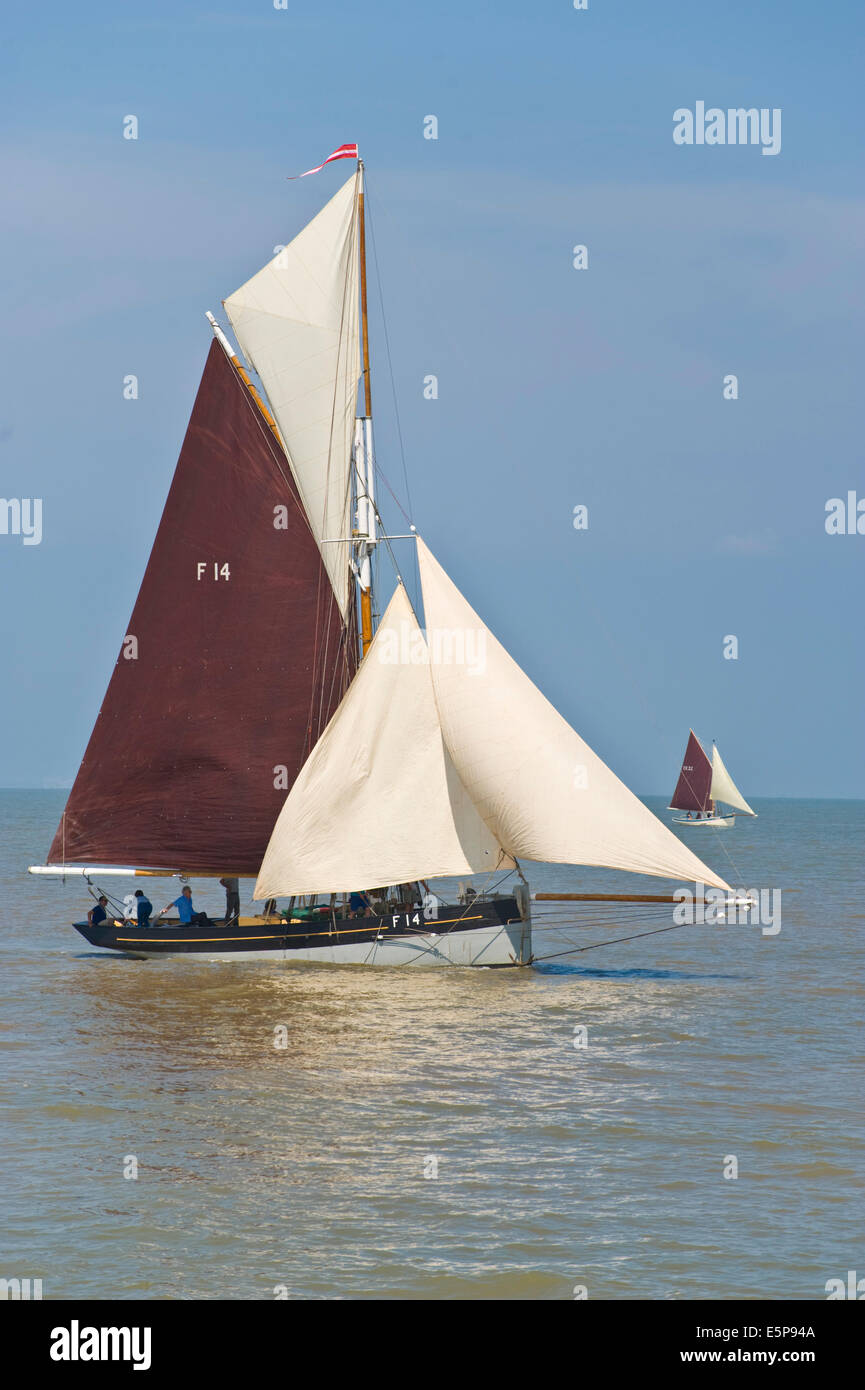 Vintage oyster smack sailing in regatta during Whitstable Oyster Festival Kent England UK - Stock Image