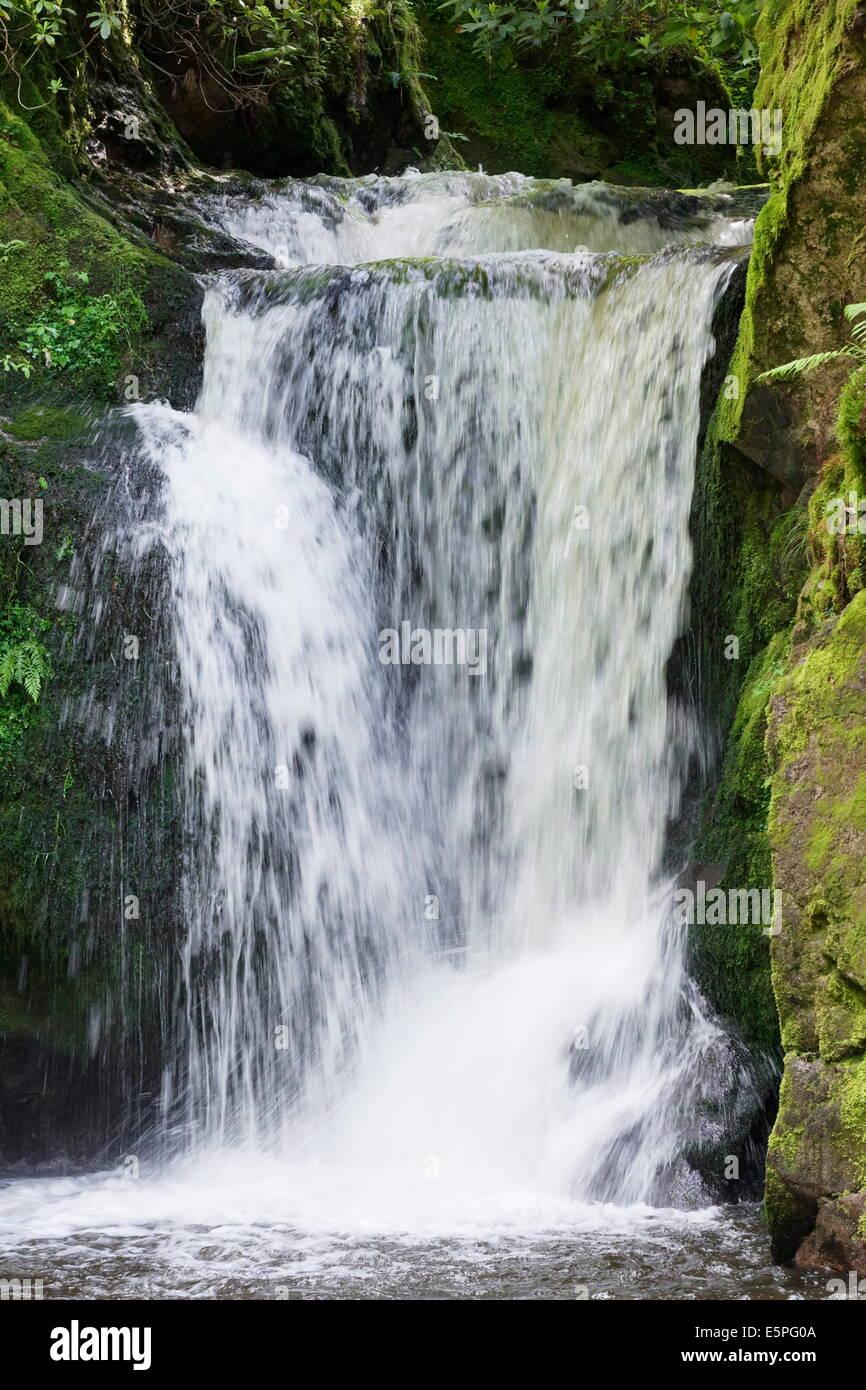 Geroldsau Waterfalll, Geroldsau part of the city of Baden Baden, Black Forest, Baden Wurttemberg, Germany, Europe - Stock Image