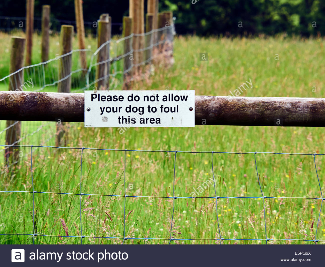 please do not allow your dog to foul this area sign on a wooden post leading to field of grasses and wildflowers - Stock Image