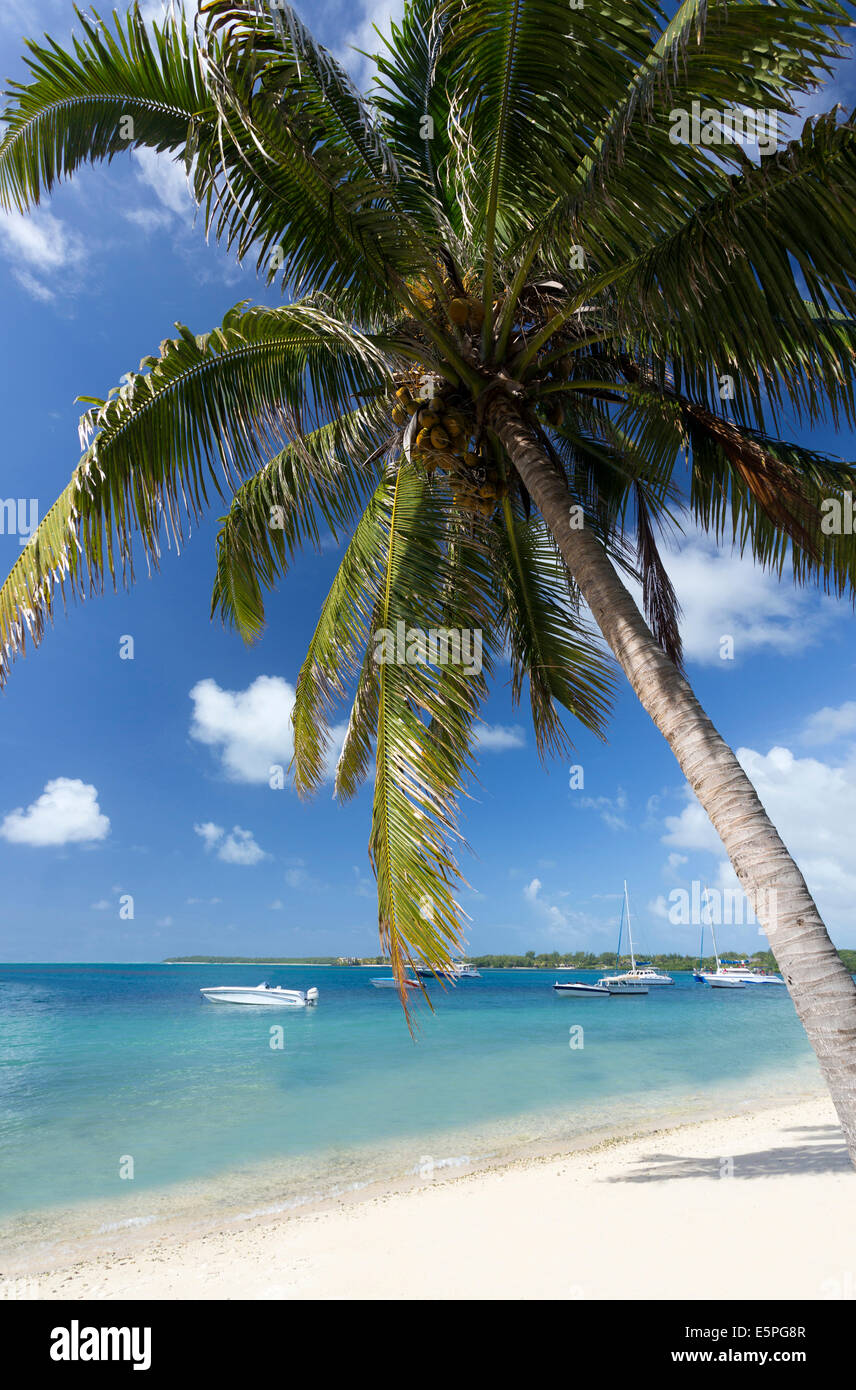 Beach scene at Trou D'eu Douce where tourists catch ferries to the island of Ile Aux Cerfs, Mauritius - Stock Image