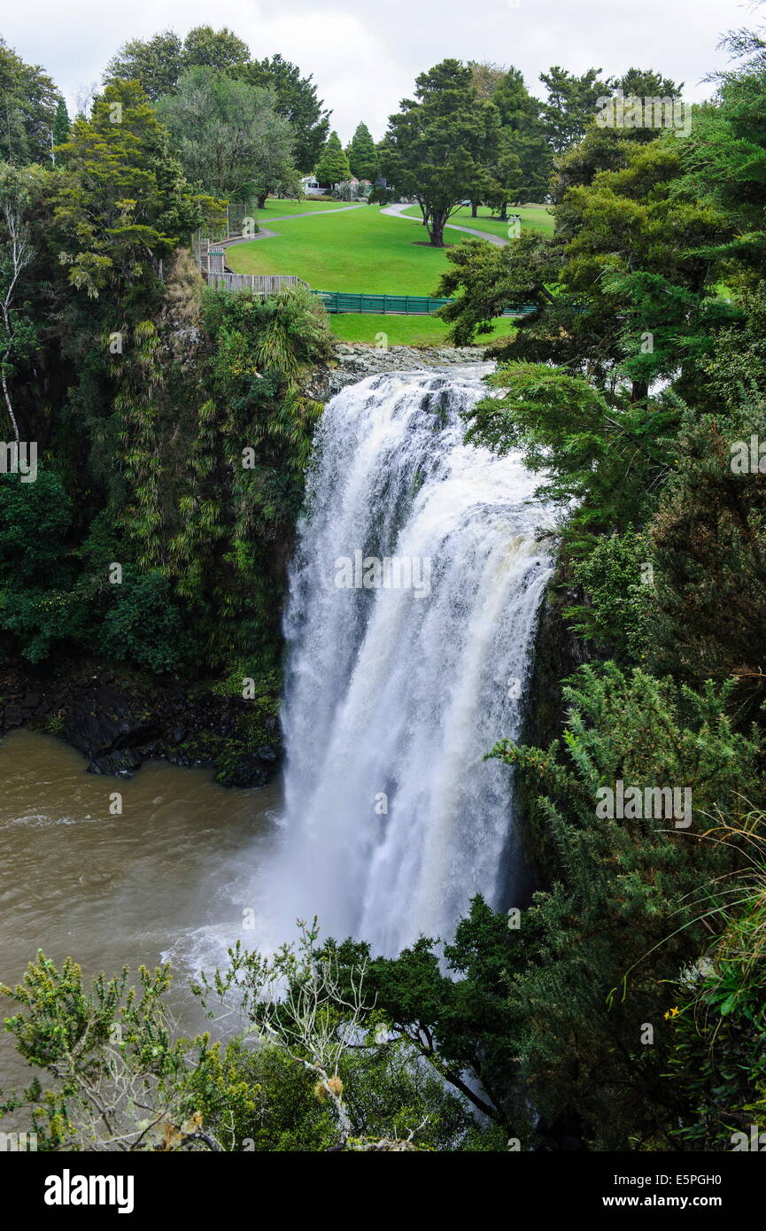 Whangarai Falls, North Island, New Zealand, Pacific - Stock Image