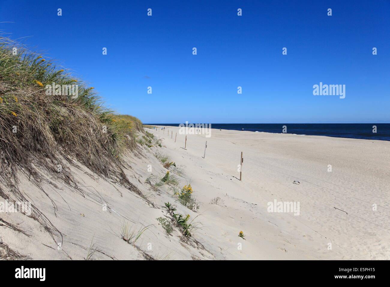 Nauset Light Beach, Cape Cod National Seashore, Orleans, Cape Cod, Massachusetts, New England, United States of - Stock Image