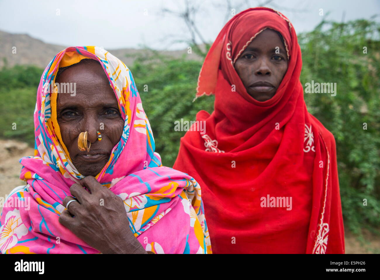 eritrean stock photos & eritrean stock images - alamy