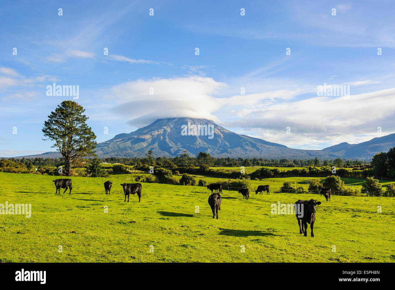Mount Taranaki, North Island, New Zealand, Pacific - Stock Image