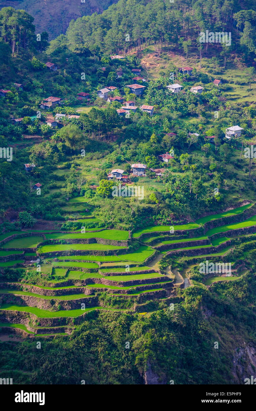 View from Kiltepan tower over the rice terraces, Sagada, Luzon, Philippines, Southeast Asia, Asia - Stock Image