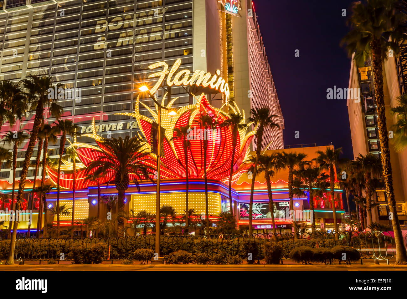 Neon lights, Las Vegas Strip at dusk with Flamingo Facade and palm trees, Las Vegas, Nevada, United States of America - Stock Image